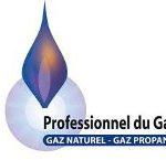 PROFESSIONNEL DU GAZ